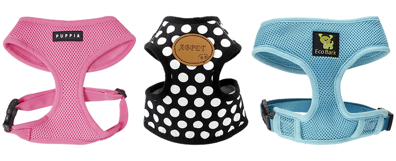 Best Harnesses for Small Dogs