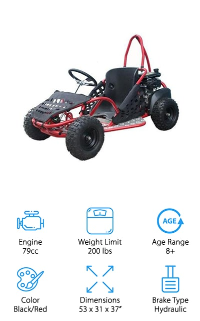 10 Best Gas Go-Karts for Kids 2019 [Buying Guide] – Geekwrapped