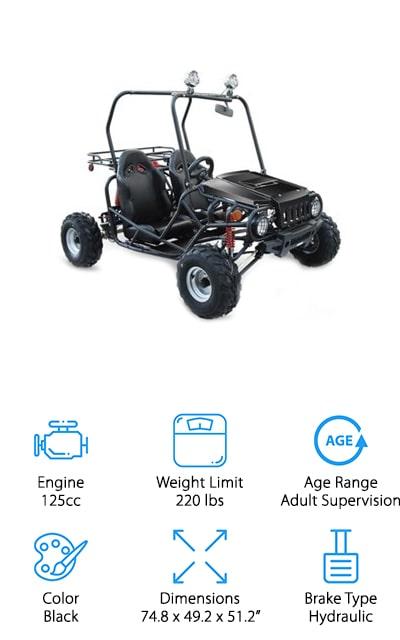TaoTao Buggy Go-kart