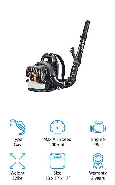 Poulan Pro Backpack Blower