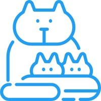 Best Automatic Cat Litter Boxes
