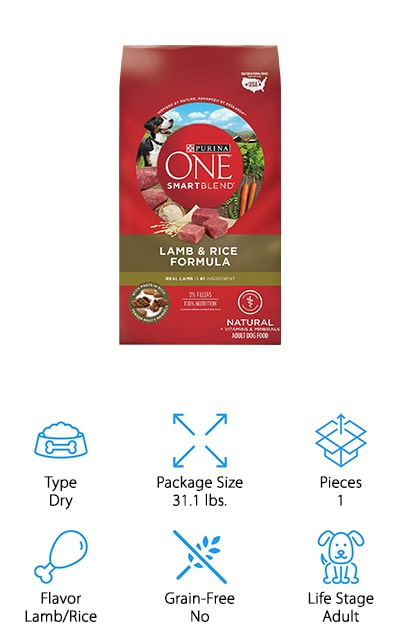 Purina ONE SmartBlend Dog Food