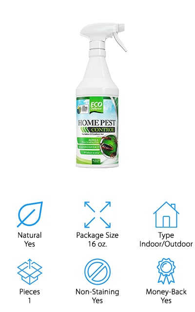 Eco Defense Pest Control Spray