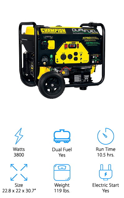 Champion Dual Fuel RV Generator