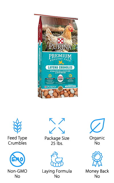 If you have cats or dogs you probably know all about Purina, but you may not know they make the best chicken feed. This package is convenient and easy with crumbles that provide your chickens with everything they need. It has marigold extract to help increase the color of the eggs and fresh ground grains to improve your chicken's overall health. You'll also find calcium manganese and minerals that help make the shells even stronger. Fortified with plenty of vitamins, minerals, and other amino acids, this product is one that you're going to be happy to feel your chickens. The lack of antibiotics and growth hormones will definitely make you happier to use this compared to some other brands and the fact that it has prebiotics, probiotics and yeast means that it's designed to help improve the immunity and strength of your chickens as well. These vitamins are designed to keep them healthy for a long time to come.