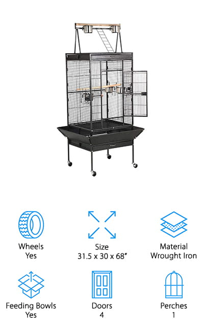 Best Cockatoo Cages