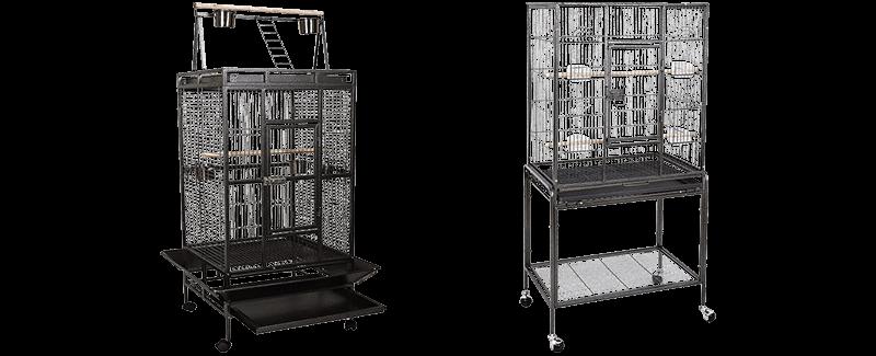 Best Cockatoo Cages