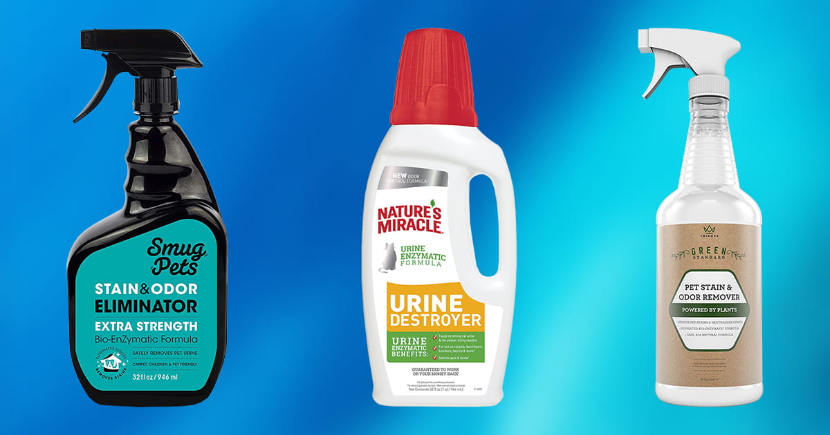 10 Best Enzyme Cleaners For Cat Urine 2020 Buying Guide
