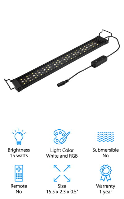 Best Lights for a Planted Aquarium
