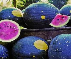 Star Watermelon Seeds