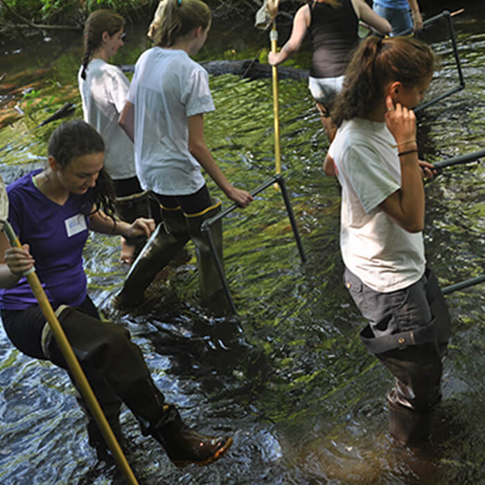 Restoration Ecology Ecology Summer Camp