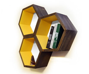Honeycomb Shelves Biology