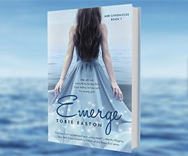 Emerge Fantasy Book Series
