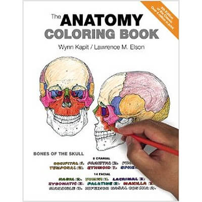 Best Advanced Coloring Books For Kids, Teens, and Adults