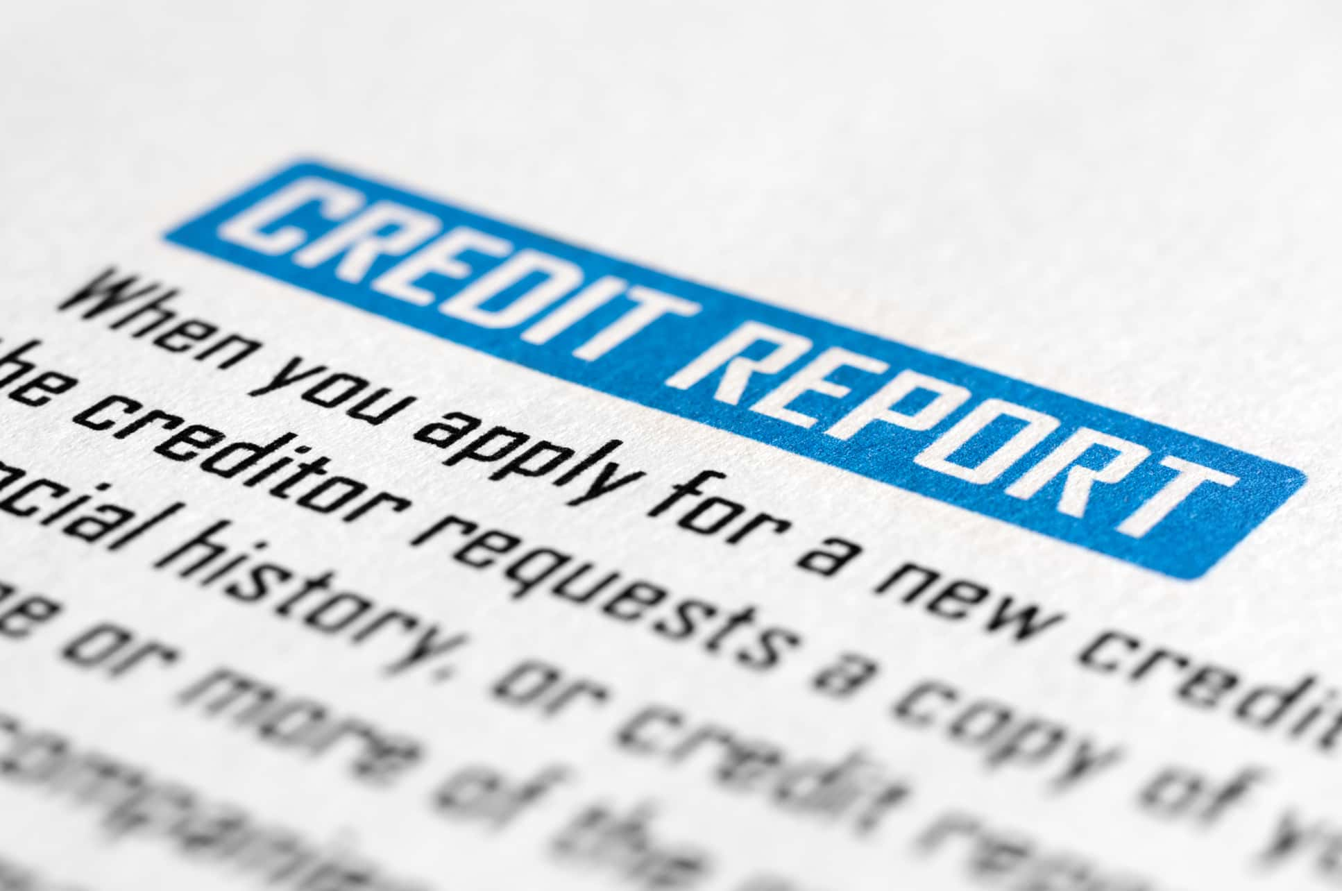Credit Reports - New Zealand