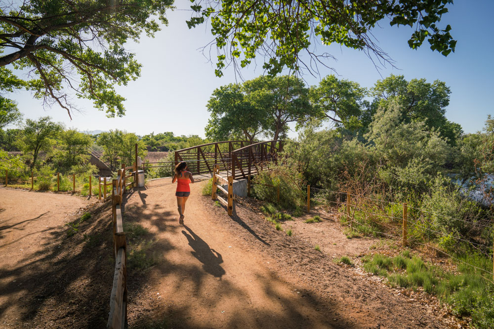 The Paseo del Bosque is recommended by notable locals as one of the best trails in Albuquerque, NM.