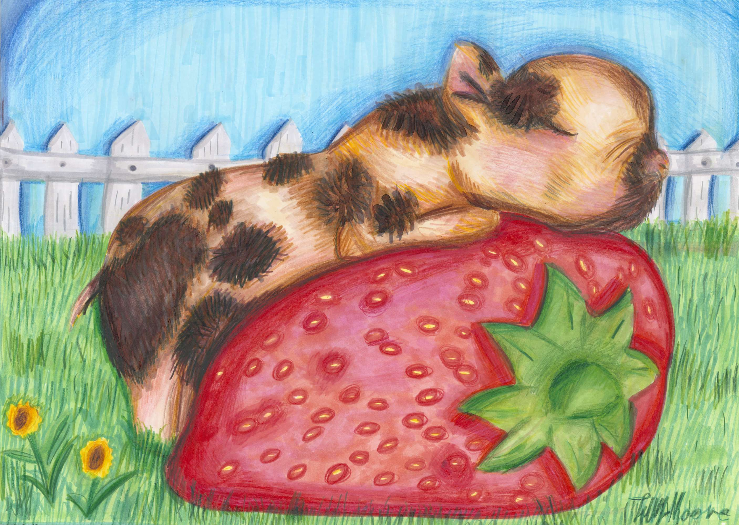 Loving the Strawberry Life