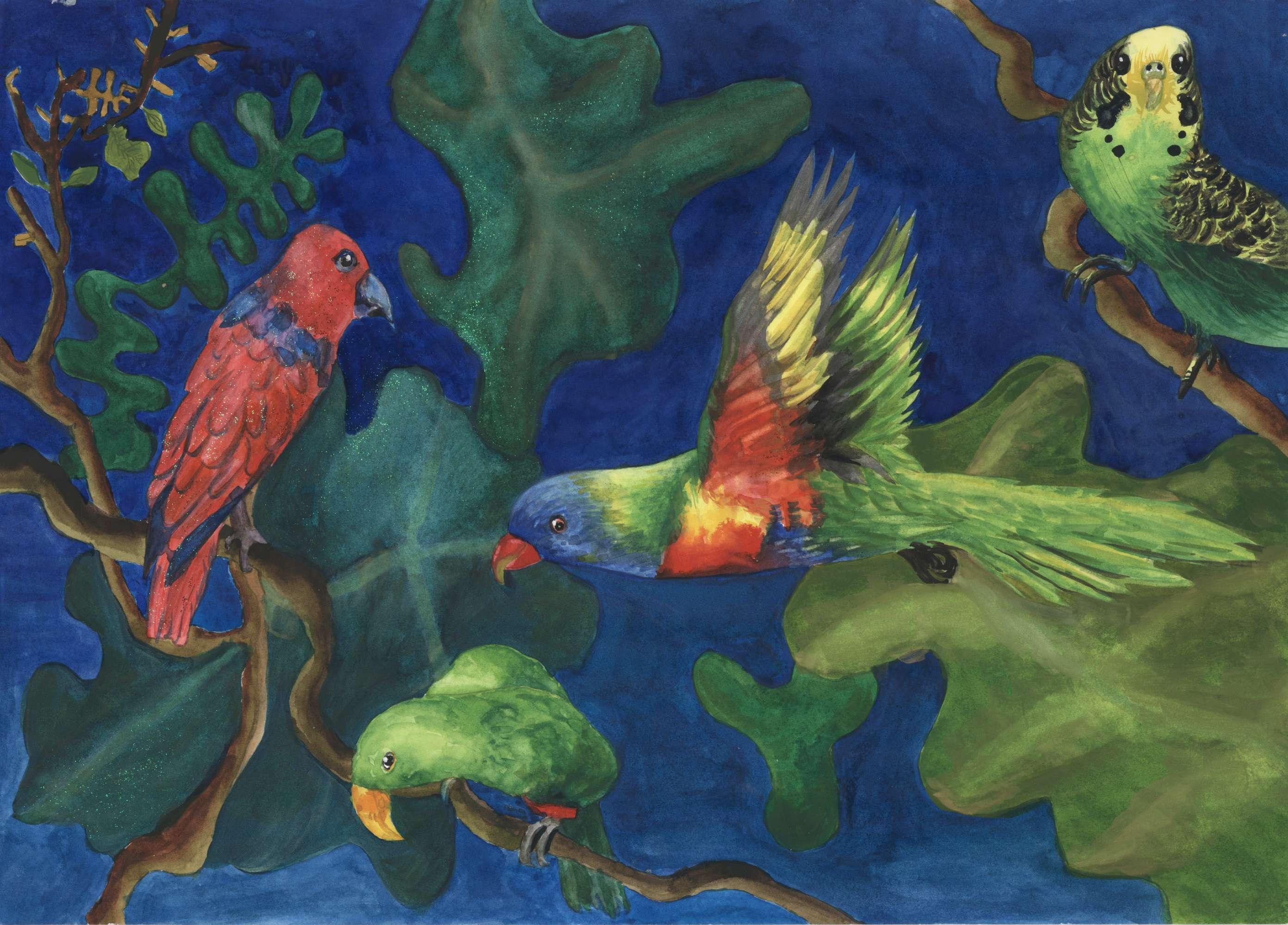 The Colourful Parrots
