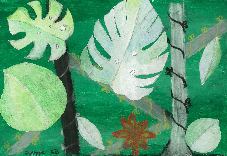 Rainforest  Study
