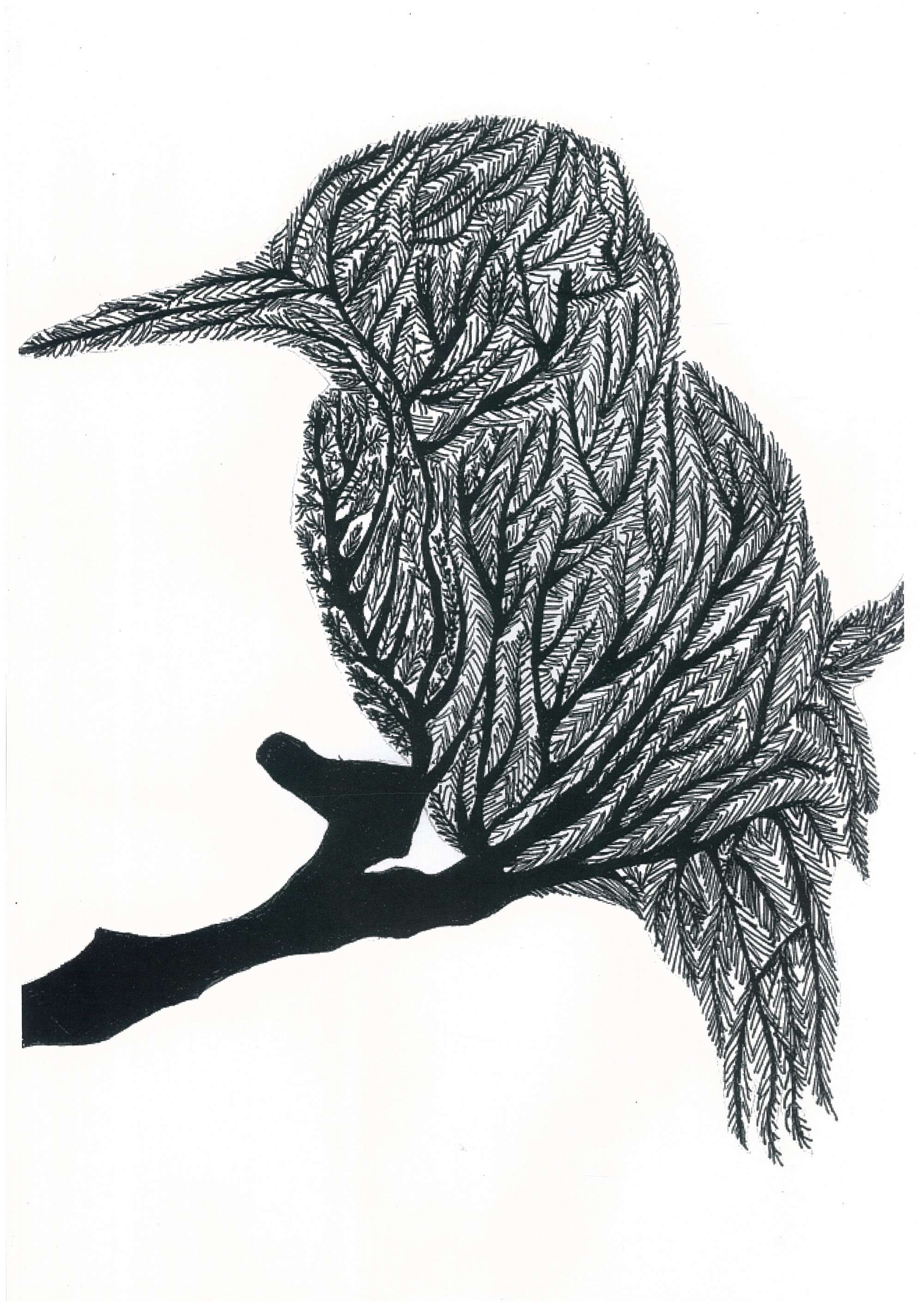 Design Bird 1