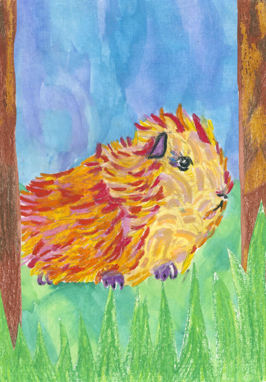 The Summer Guinea Pig