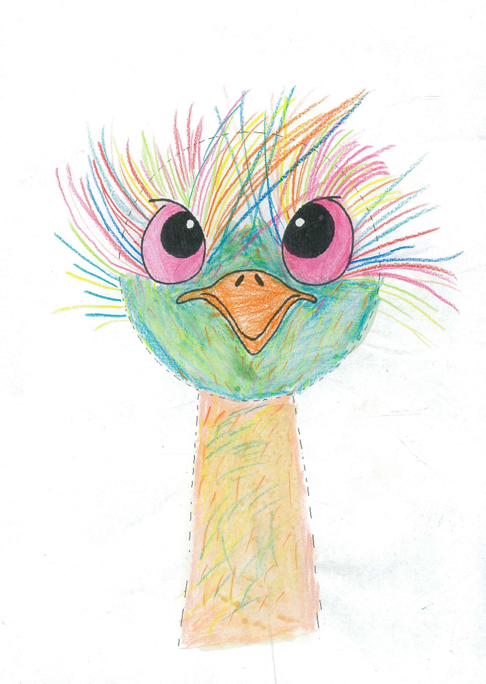 The Colourful Emu