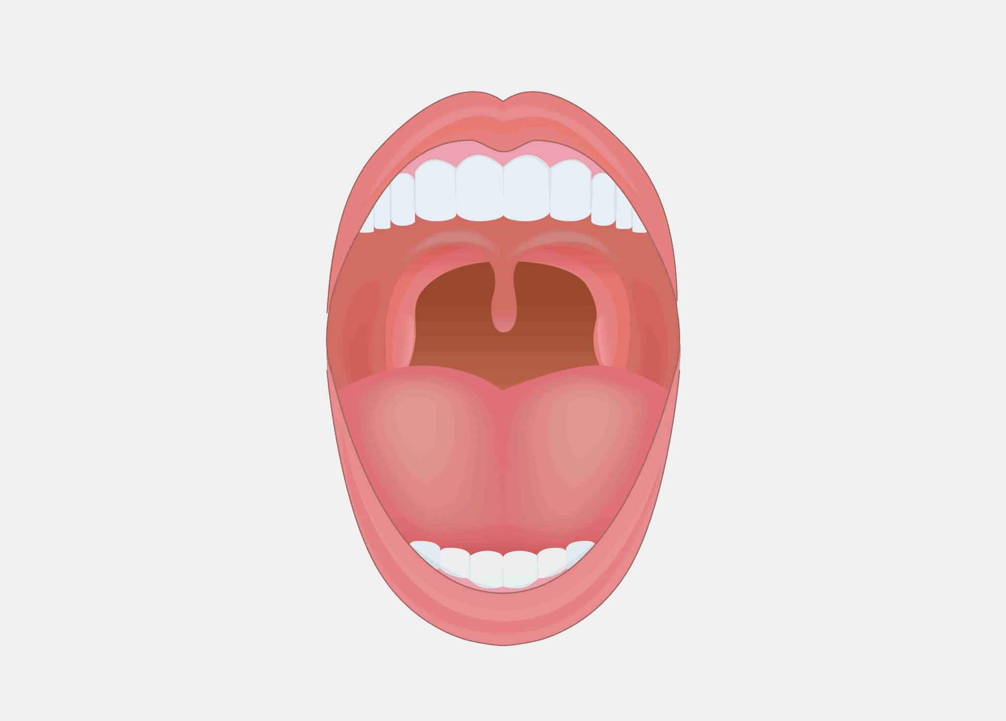Des HPV cutanés sont présents dans la cavité orale
