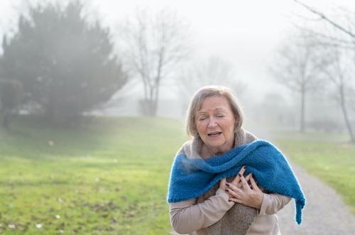 Infarctus du myocarde aigu : impact du sexe sur la nécrose et le myocarde à risque