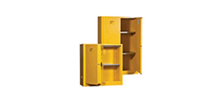 Lyon Safety Cabinet
