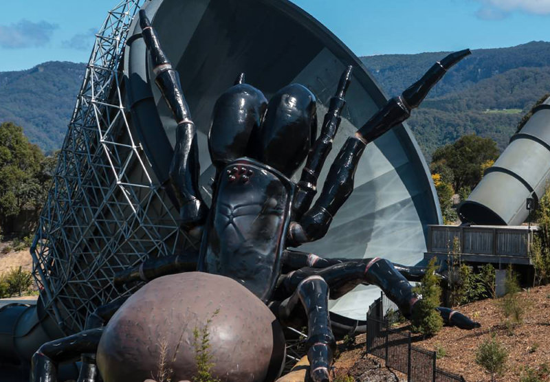 Big Funnel Web Spider statue in Jamberoo, NSW