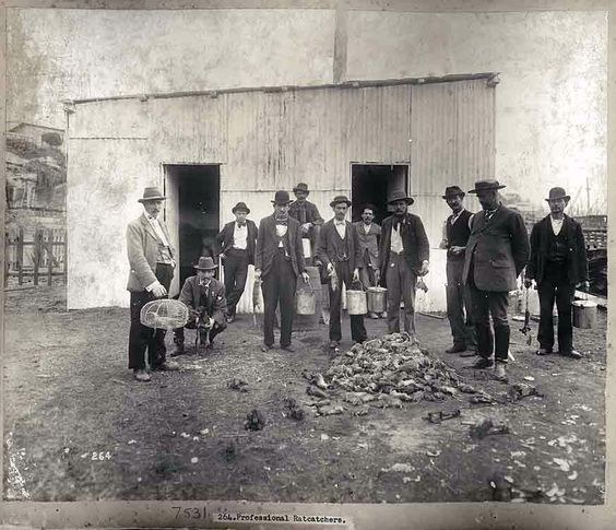 Group of rat catchers near a pile of rats