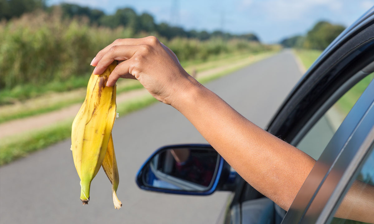 Throwing banana skin out of car window