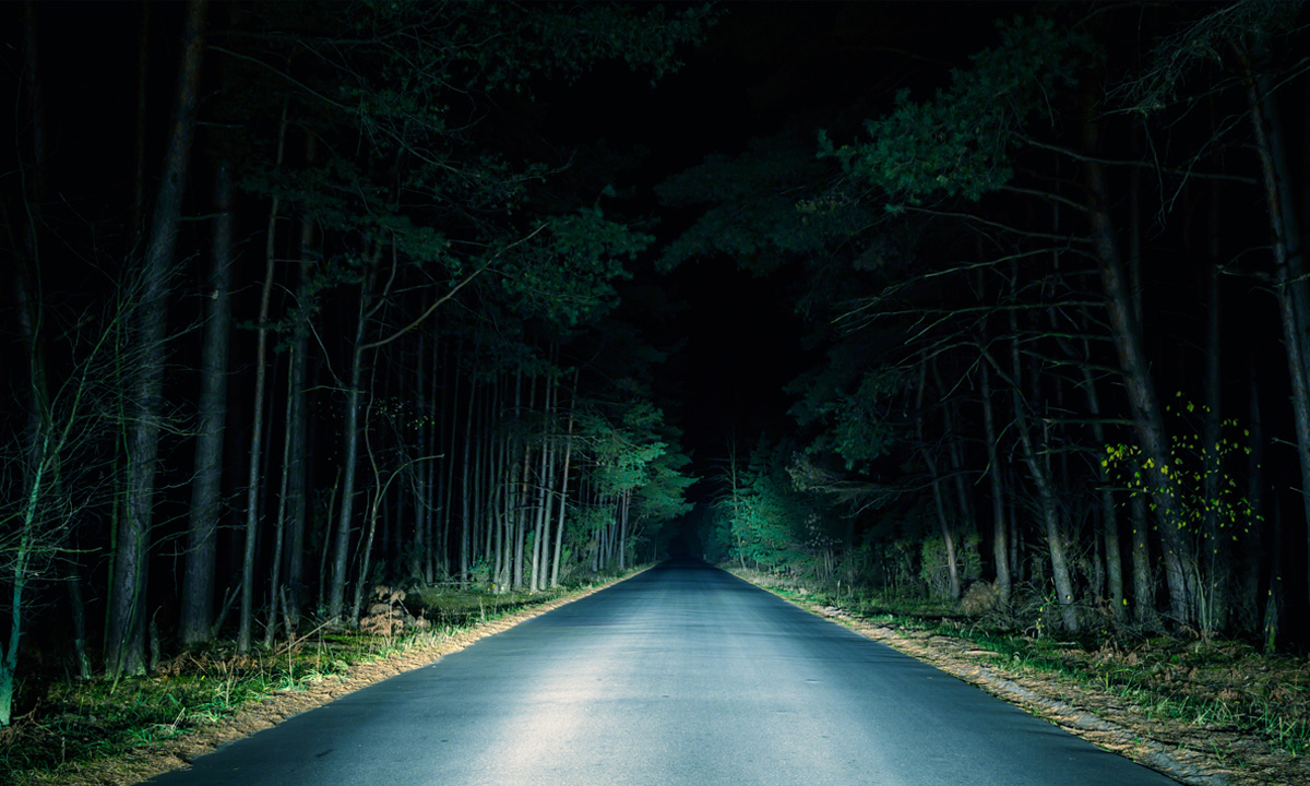 Road at nightime, trees on the sides