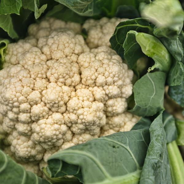 Cauliflower - per head