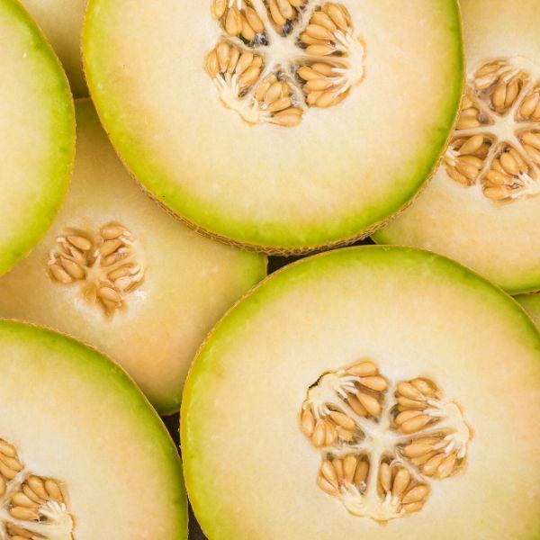 Melon - Honeydew