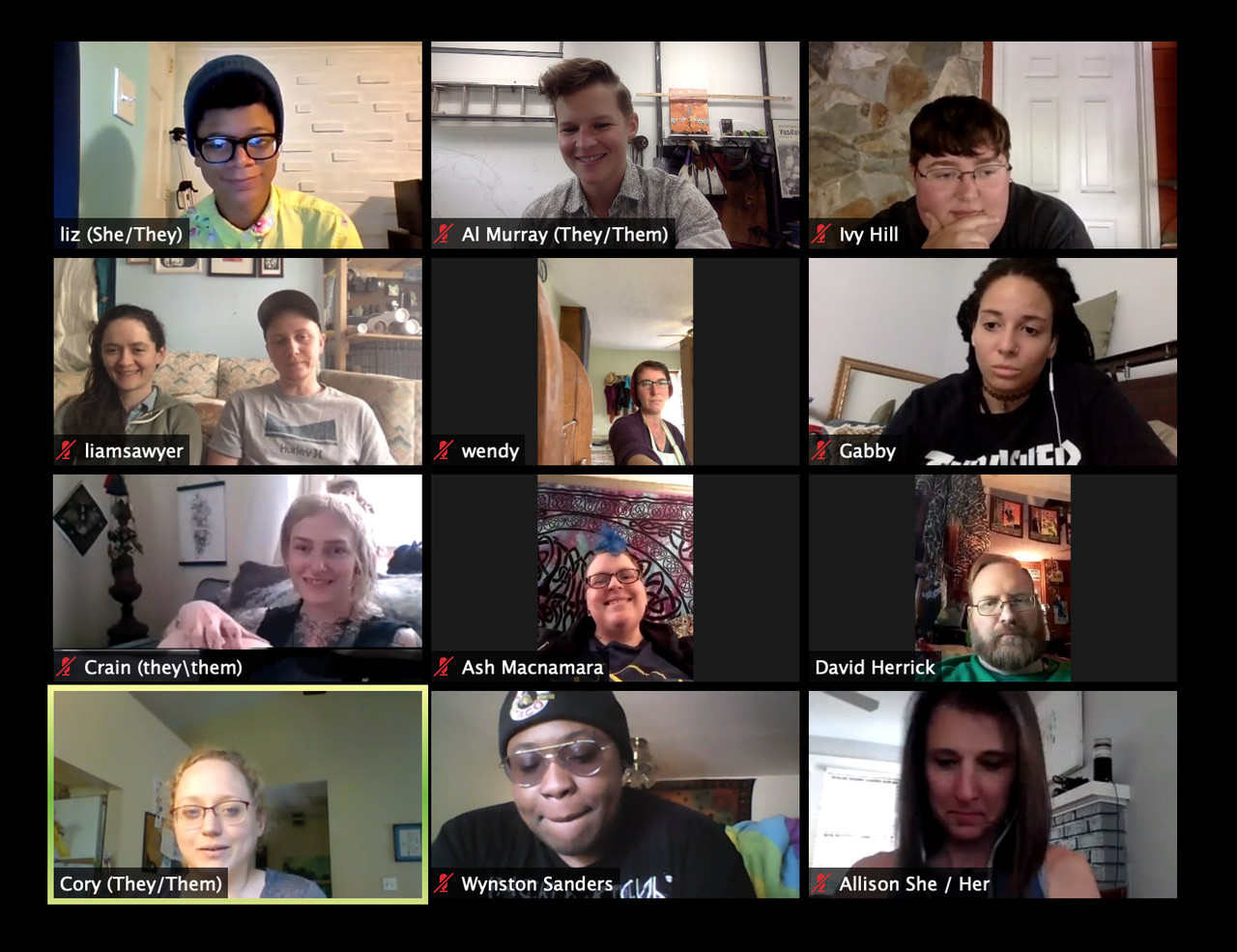 A screenshot of a virtual meetup.