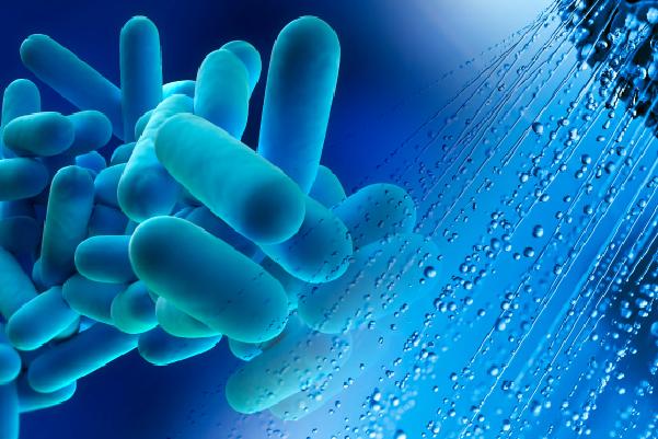 Virus and shower water