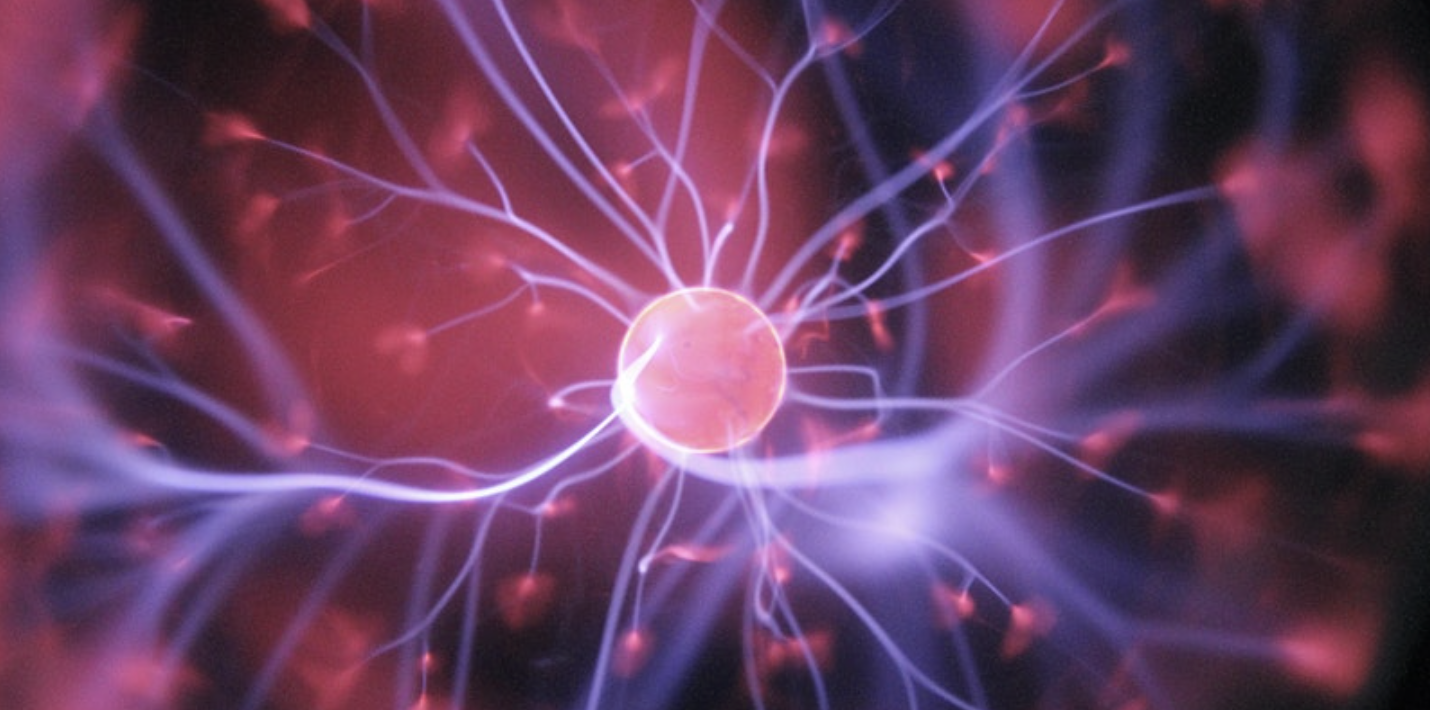 The Science Behind Mental Health