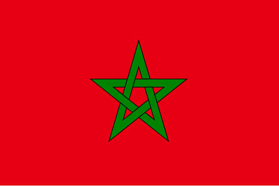 Chemical-Free Morocco Pool Dealer Flag