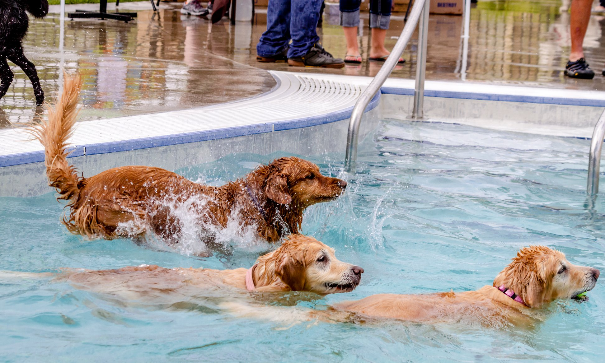 Customer's Pool
