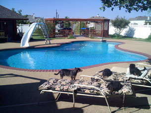 Chemical Free Pool in Texas