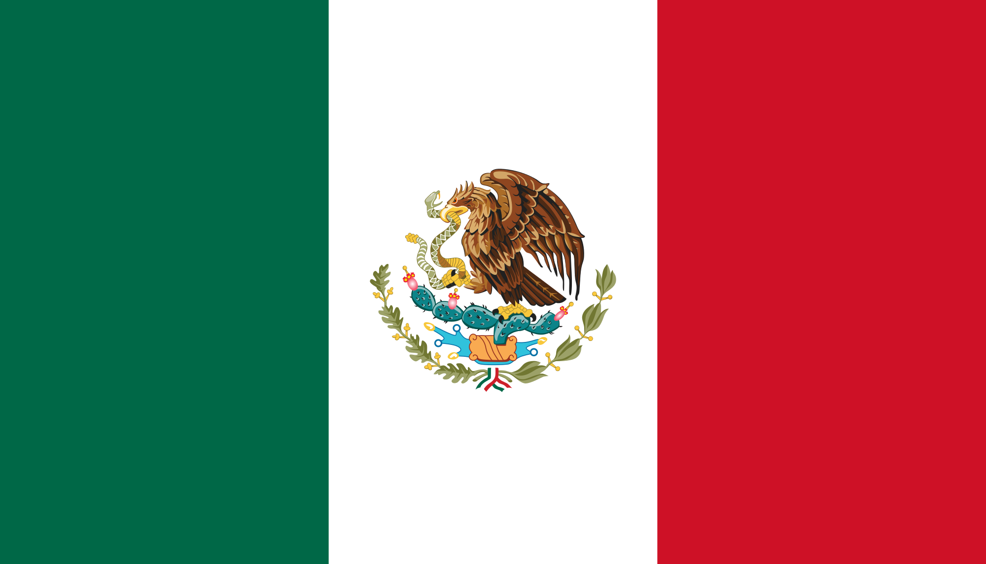 Chemical-Free Mexico Pool Builder Flag