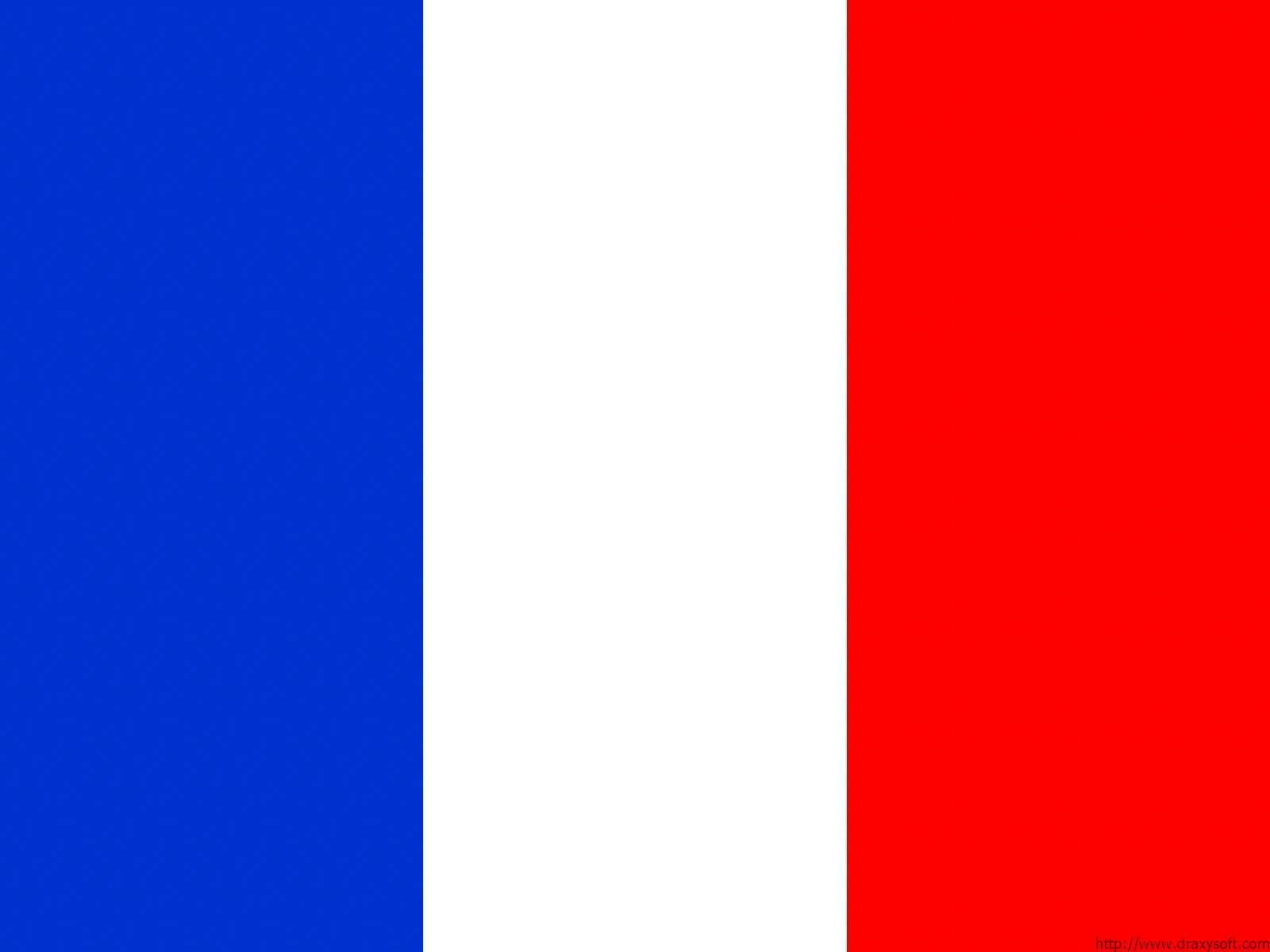 Chemical-Free France Pool Builder Flag