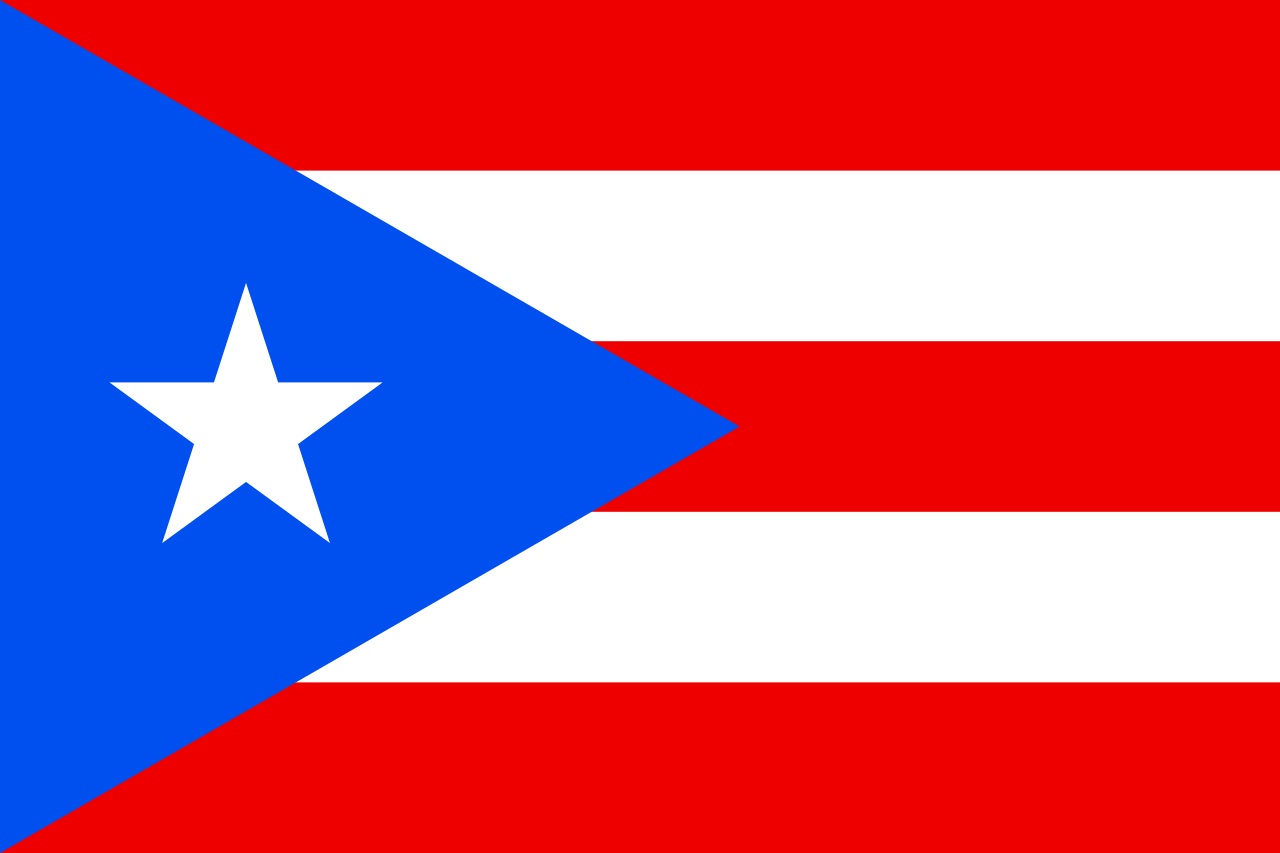Chemical-Free Puerto Rico Pool Builder Flag