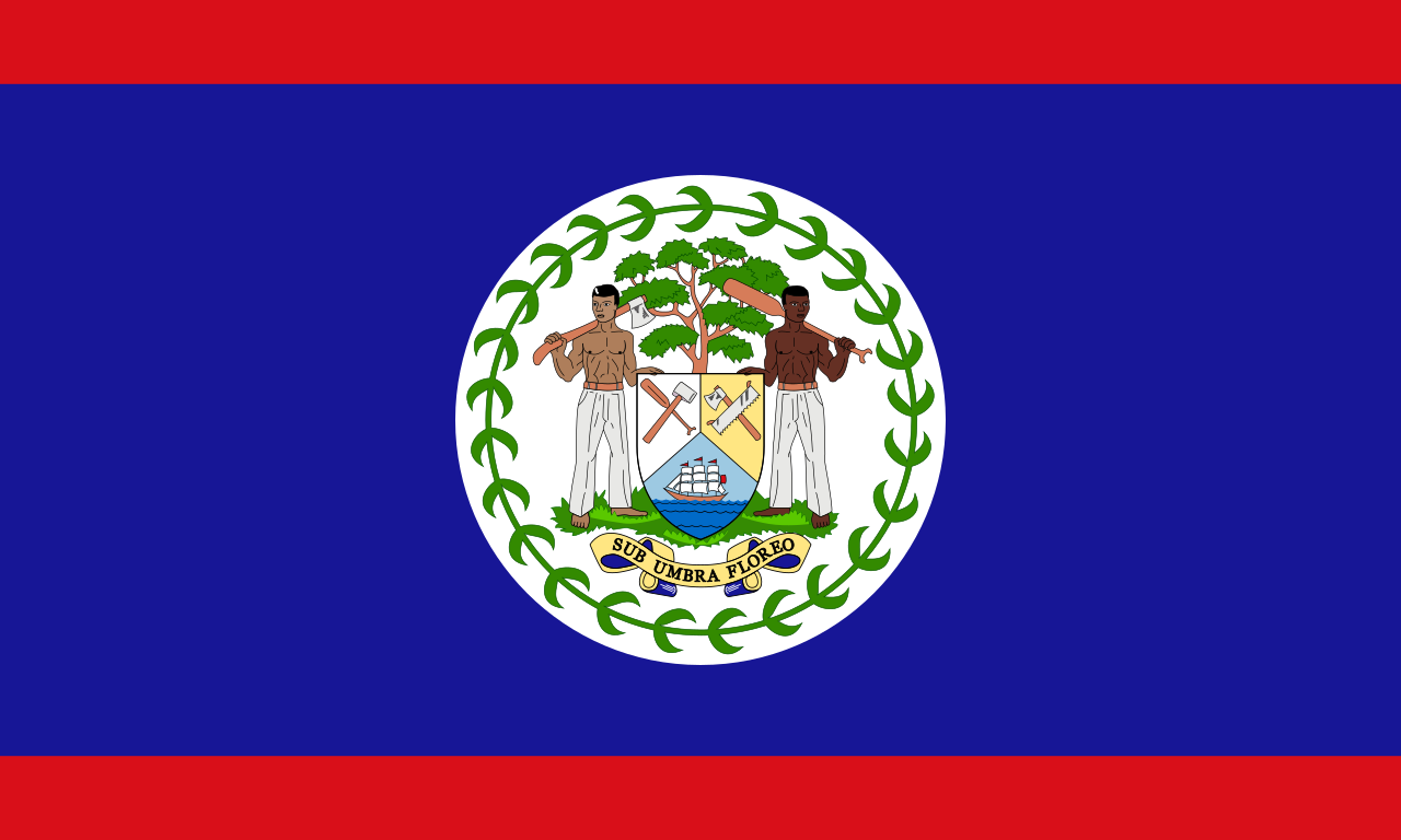 Chemical-Free Belize Pool Dealer Flag