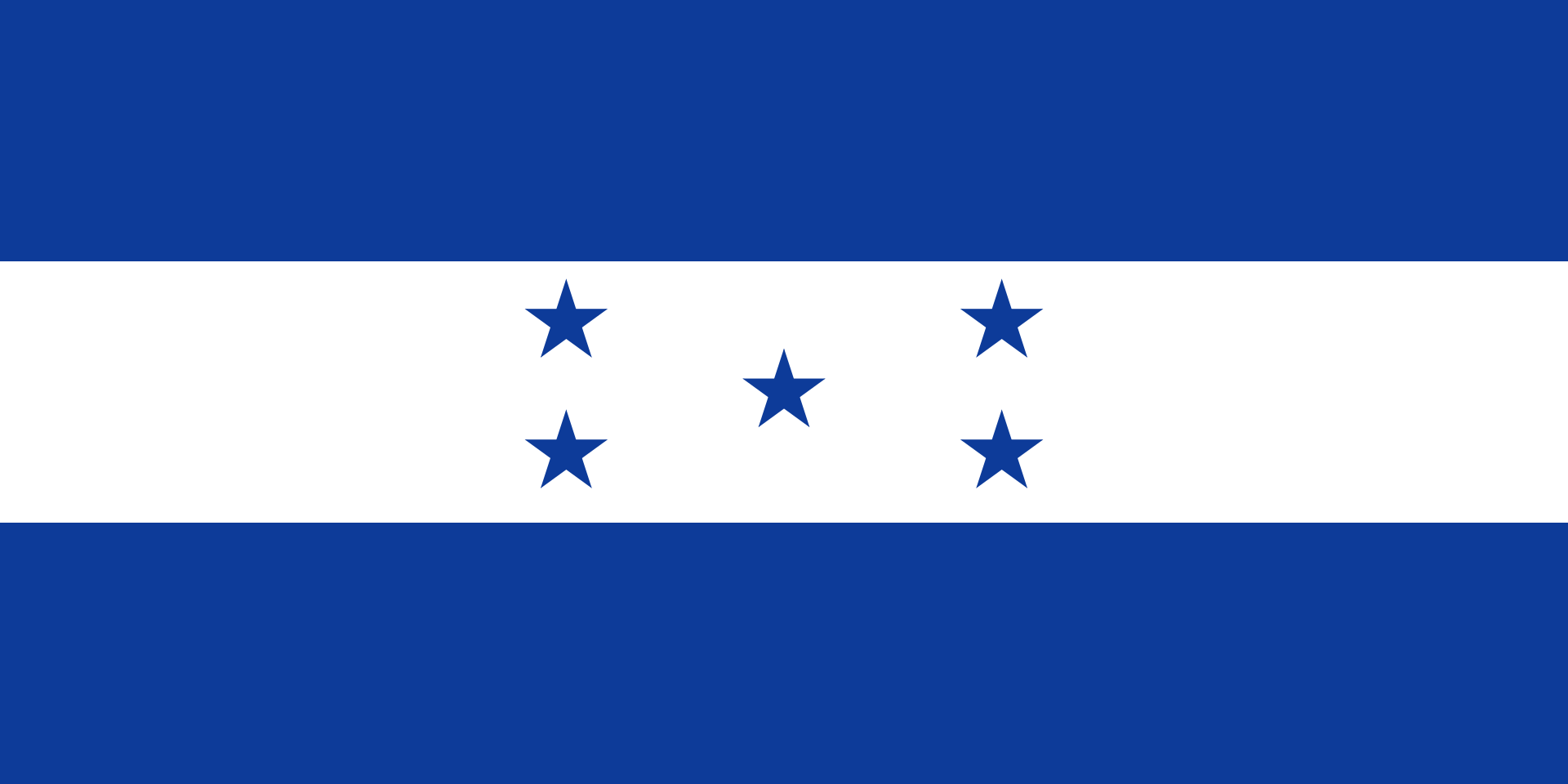 Chemical-Free Honduras Pool Dealer Flag