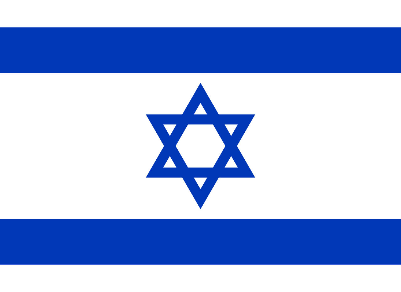 Chemical-Free Israel Pool Dealer Flag