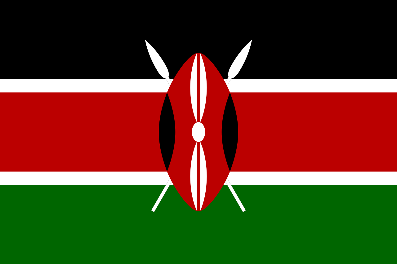 Chemical-Free Kenya Pool Dealer Flag