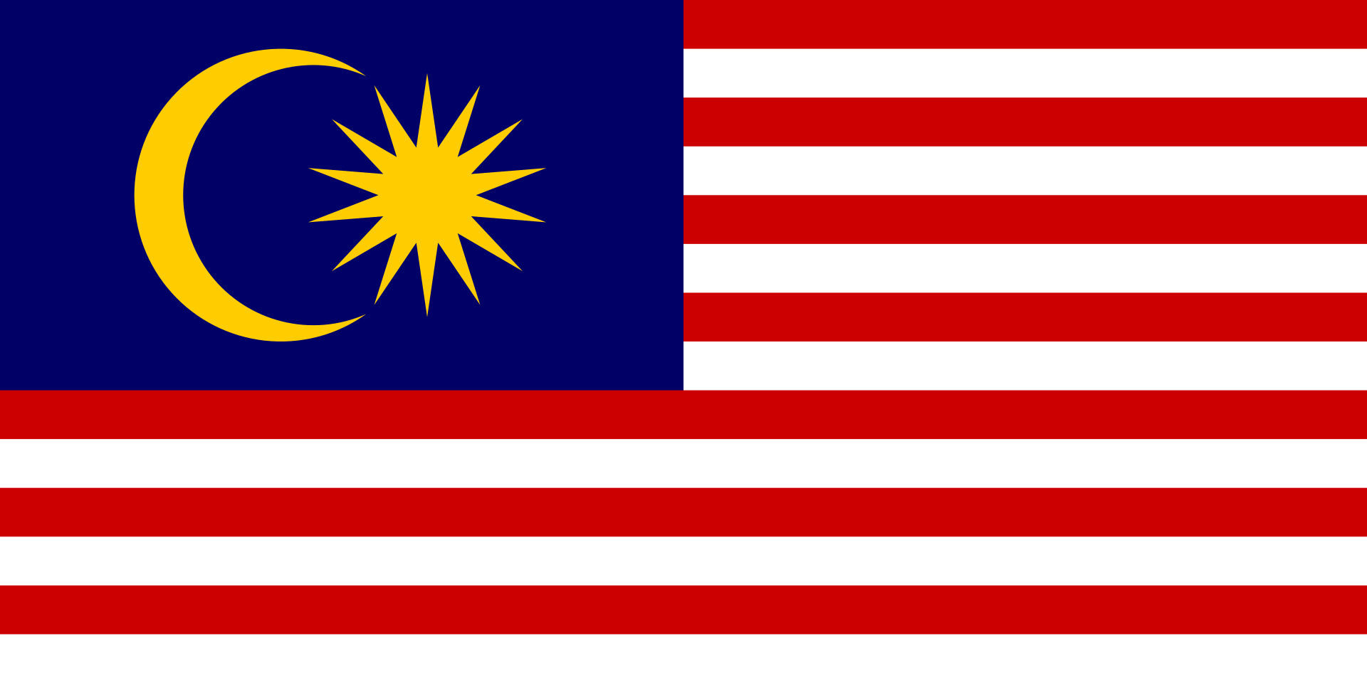 Chemical-Free Malaysia Pool Dealer Flag