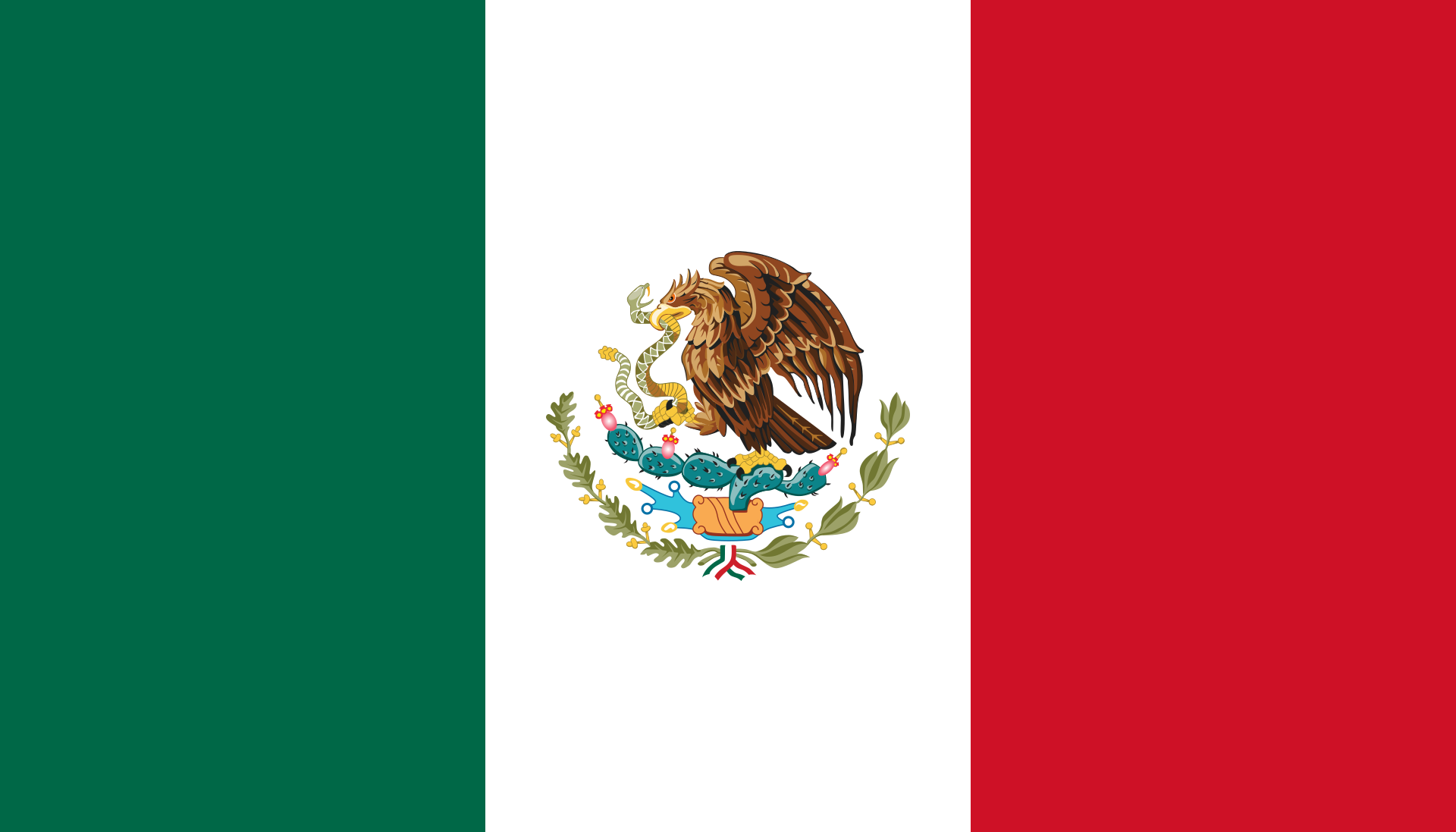 Chemical-Free Mexico Pool Dealer Flag